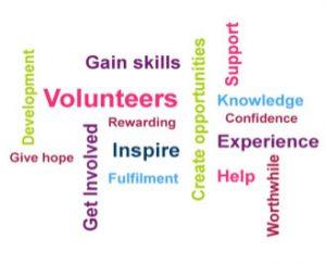 Volunteer Gains