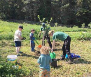 VABS planting trees