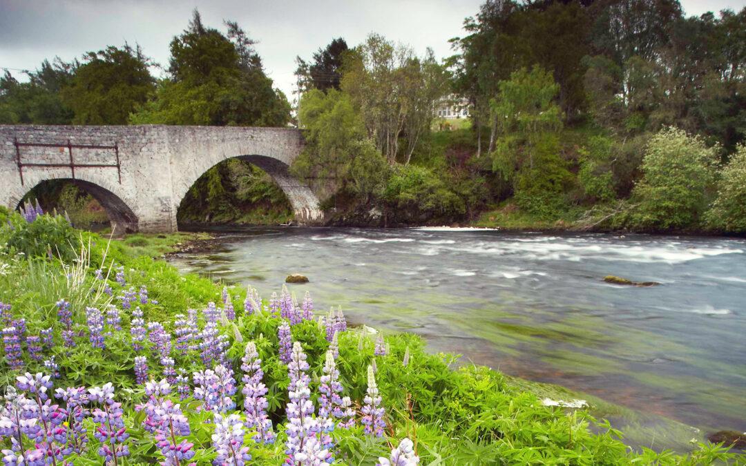 old-spey-bridge