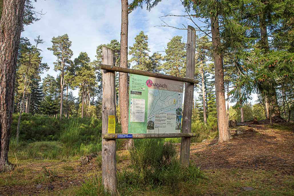 Mountain Bike Trails in Grantown on Spey
